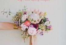 flora + blooms + petals