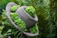 Garden - Hypertufa & Concrete / by Sandy Hilliard