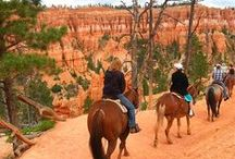 Utah Travel / Utah Travel / by Caz and Craig @yTravelBlog