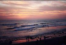 I need the sea, because it teaches me