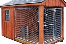 Chicken Coop Ideas / My husband loves eggs.  Together with all the baking I do - it only makes sense to have chickens on the ranch.  However---- my dogs would consider them to be snack food; this is a board of research in how to make dog, coyote, bear, mountain lion and fox proof (yes we have all these) living quarters for my future laying hens. / by Noreen Hart Kealer