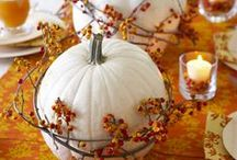 Fall/Thanksgiving / by Jenny Laney