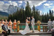 Weddings / by Debbie Slater