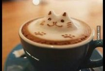 Coffee / All about coffee! / by Sherry Fox