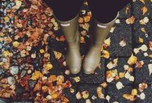 oro de octubre.  / I am so happy to live in a world where there are Octobers...~Anne of Green Gables  / by Grace