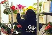 Behind The Scenes at Gifts for Europe / GiftsforEurope is a family owned business based in Belgium - see what goes on behind the scenes!
