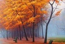 Autumn Lovely / The best season of the year.  / by Pamela S