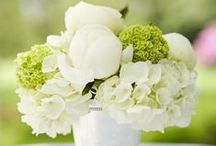 Green and White Wedding Inspiration