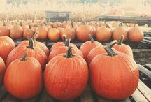 October / All things related to the great month of October. / by Heather Miller