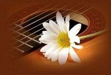 Musica classica / La musica coinvolge ogni aspetto della nostra vita, ma troppi si sono dimenticati di quella classica, che è la base delle altre, soprattutto riguardo il melodico suono della chitarra.