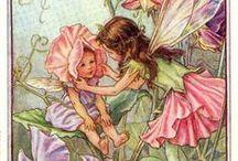 Fate / piccole fatine dei fiori, per rallegrare sempre il nostro umore..
