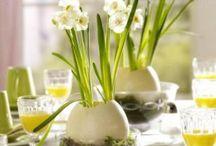 Frühlingsdeko / Spring Decorations