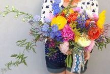Fresh Blooms / by Lily and Violet