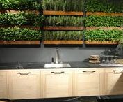 Growing Food Indoors / How to grow edible plants in your kitchen for year-round food