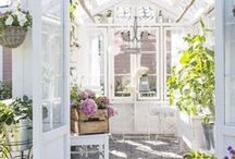 She Sheds / Pretty she sheds, potting sheds, garages, greenhouses, and outdoor living structures. These little oasis areas in your yard are the perfect place for a productive cup of tea!