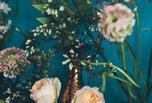 Floral Arranging / Gorgeous floral arrangements and tips for floral arranging. The most beautiful flowers, the cleverest methods, and future projects to DIY!