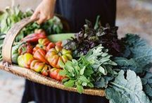 Harvest Season / Harvest season inspiration and things to remember next year. Beautiful harvest vegetable photos, lovely harvest baskets, and thanksgiving plant love!