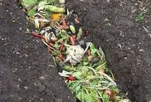 Composting DIY Ideas for Beginners / Composting ideas and DIY instructions for beginners, as well as more experienced gardeners who want to up their compost game! Create a healthy compost that will make nutritious organic plant food for your garden.