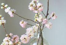 Natural Spring Decor
