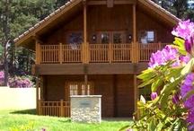 Dorset Lodge Resort