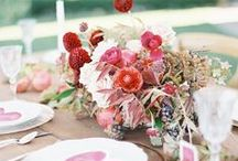 Florals / pretty flowers and floral arrangements