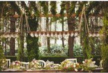 Wedding Inspiration / by Kaitlin Gräble