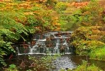 Autumn in Northumberland / See Northumberland in beautiful autumnal colours.