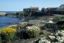 Seaside Towns / Northumberland's beautiful coastline is dotted with seaside towns and villages that are picture perfect.