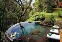 Cool Pools & Ponds!! / by Catherine Lutes