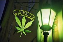 The Ganja Joint / Welcome! Hippies use FRONT door! ;) Ganja & CBD pins. No Advertising or Babes & Weed pins. No hashtags or Long Multi-Pin Pins. Remove clutter beneath the pin unless it's something you wrote to share or is essential. All pins must have a cover *not* Pinterest's Default cover. To Be ADDED* msg. me or leave your name under a recent pin of mine. PpP~ Puff Puff Pass the virtual joint that never burns out! :)