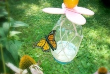 Butterflies and Caterpillars / by Allison Krahenbuhl