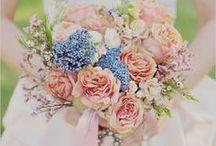 Wedding flowers / by Elisa Bond