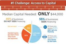 Small Business Capital Infographics / How small businesses deal with capital, financing, loans, expansion and growth / by Sean X