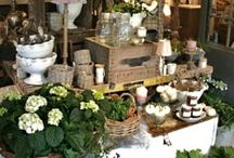 DECOR / by Michelle Bailey-Browning