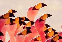 {prints, patterns & pr} / by bryn townsend