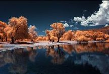Infrared / by Kyle