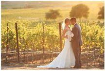 turnquistphotography.com / wedding & portrait photography