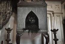 Interior Design: Pets