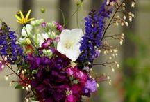Flower Arranging / by Nadja Ormerod