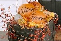 Fall / by Julie Carroll
