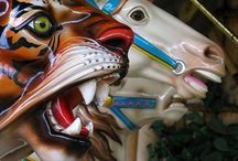 On a Carousel / by Susan Dunsmuir