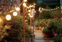 Lights  / by Susan Dunsmuir