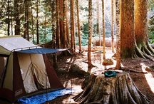 Camping Tips and Tricks / We were born in Colorado and can't help loving the outdoors. But sometimes everyone needs a little help navigating a world without running water. Here are some tips and camp hacks to keep you happy in the wilderness.