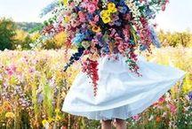 Blommen / Flowers