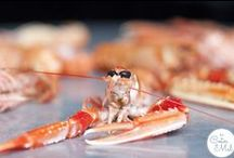 Food - Langoustine Recipes to Make You Drool / Langoustines, Langos, Sexy Lobster, Scampi, Nephrops Norvegicus, Norway Lobster, Dublin Bay Prawn... Call them what you like and make sure you cook them right! The slim, orange-pink lobster which grows up to 25 cm is a delicacy in France and Spain. Let's make it a fun food to share here as well!