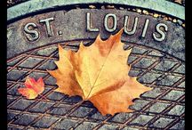ST. LOUIS and OTHER PLACES / by Christina Vaughn