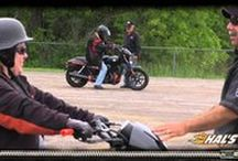 Hal's You Tube Channel / by Hal's Harley-Davidson