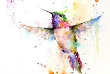 Hummingbird Visions