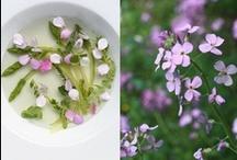 Flowering Ideas / by Willa Wylde