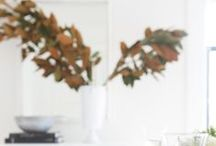 Autumn and Thanksgiving / Lovely ideas for decorating in autumn/fall and Thanksgiving. / by René Zieg | Cottage and Vine
